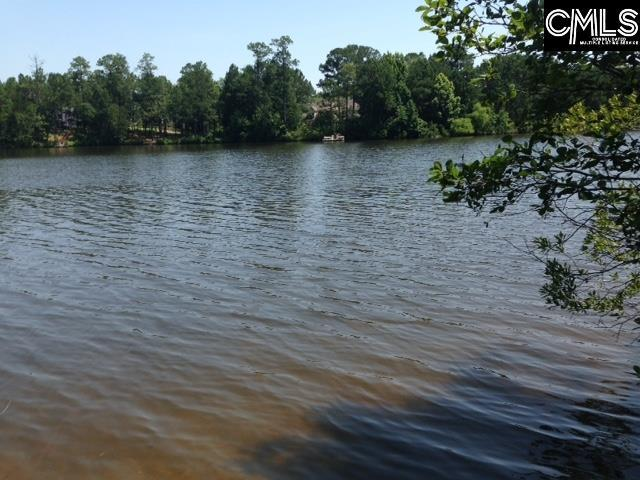 5 Shoreline Drive Lot # 3, Columbia, SC 29229 (MLS #450058) :: EXIT Real Estate Consultants