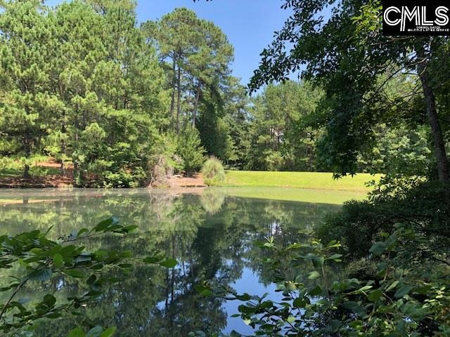 200 Treyburn Circle #137, Irmo, SC 29063 (MLS #453642) :: EXIT Real Estate Consultants