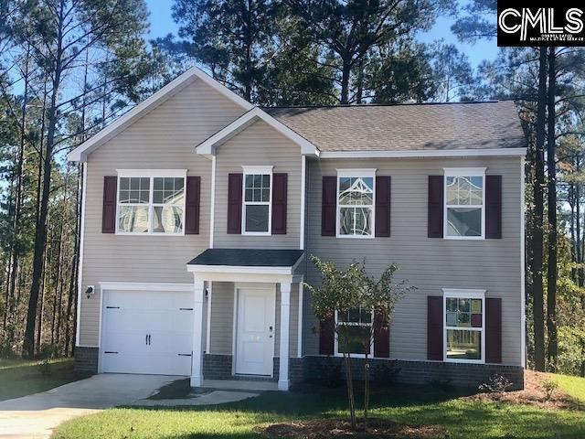 338 Allans Mill Drive, Columbia, SC 29223 (MLS #457467) :: EXIT Real Estate Consultants