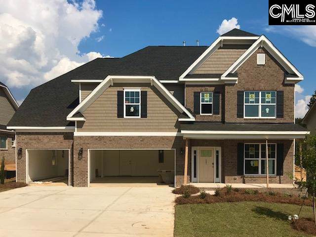 207 Chapin Brook Court, Chapin, SC 29036 (MLS #472795) :: The Meade Team