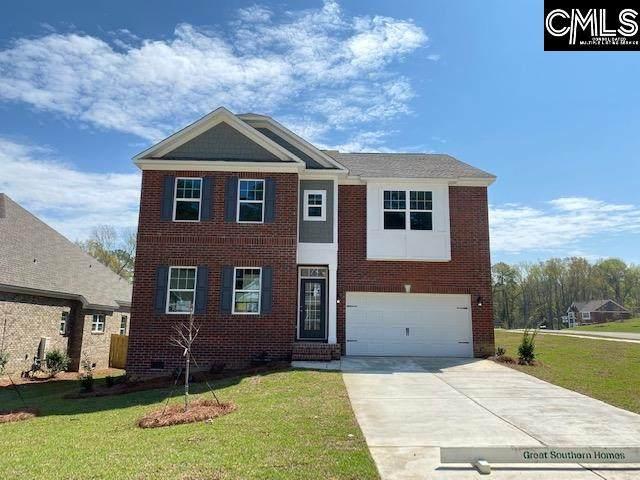 229 Cedar Hollow Lane, Irmo, SC 29063 (MLS #490485) :: EXIT Real Estate Consultants