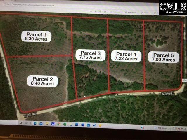 Parcel 1 Gunter Pond/Welch Road - Photo 1