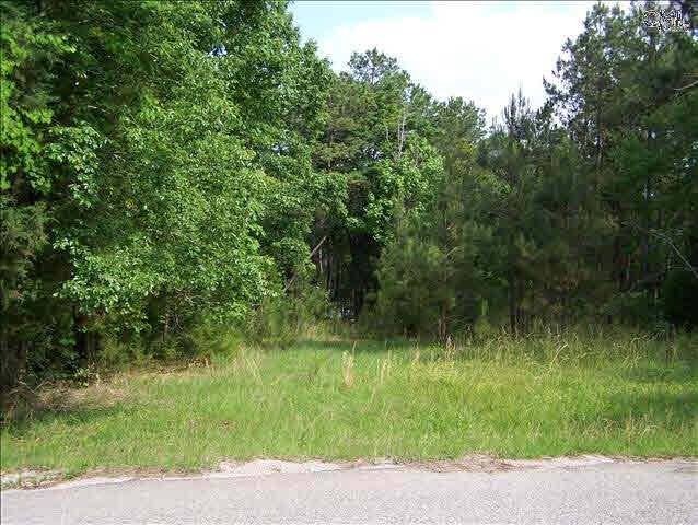 271 Goodlett Lane Lot #6, Blair, SC 29015 (MLS #355620) :: RE/MAX AT THE LAKE