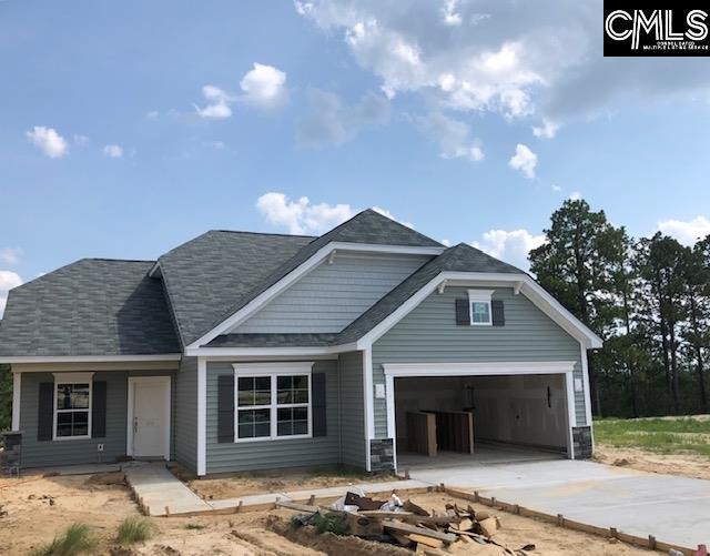 203 Aldergate Drive 9, Lexington, SC 29073 (MLS #473375) :: EXIT Real Estate Consultants