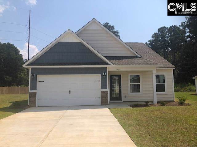 217 Elsoma Drive, Chapin, SC 29036 (MLS #474990) :: The Meade Team