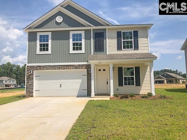 230 Elsoma Drive, Chapin, SC 29036 (MLS #474993) :: EXIT Real Estate Consultants