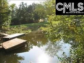 302 Smallwood Drive, Chapin, SC 29036 (MLS #418752) :: RE/MAX AT THE LAKE