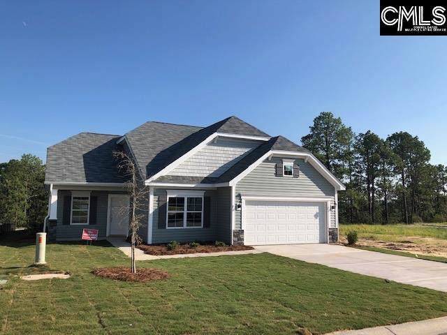 203 Aldergate Drive 9, Lexington, SC 29073 (MLS #473375) :: Loveless & Yarborough Real Estate