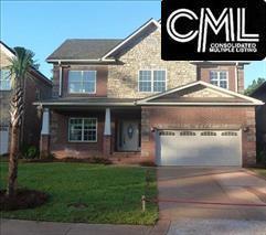 328 Lighthoouse Lane, Chapin, SC 29036 (MLS #420141) :: Home Advantage Realty, LLC
