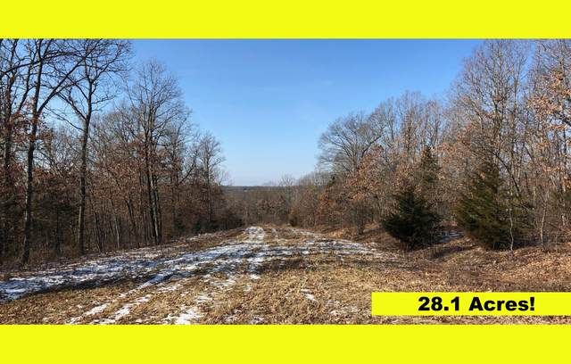 TBD 28.1 Case Ave, Holts Summit, MO 65043 (MLS #382995) :: Columbia Real Estate
