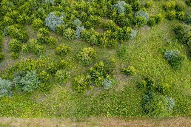 TBD 5 County Road 4044, Holts Summit, MO 65043 (MLS #382998) :: Columbia Real Estate