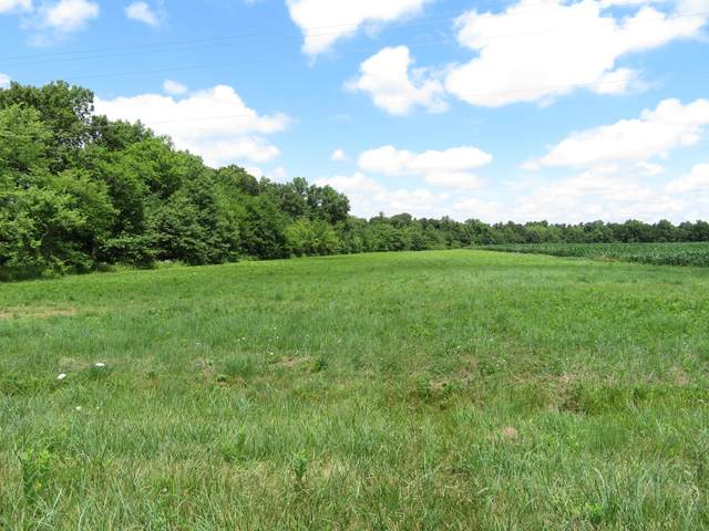 241 Booneslick Rd, NEW FLORENCE, MO 63363 (MLS #393842) :: Columbia Real Estate