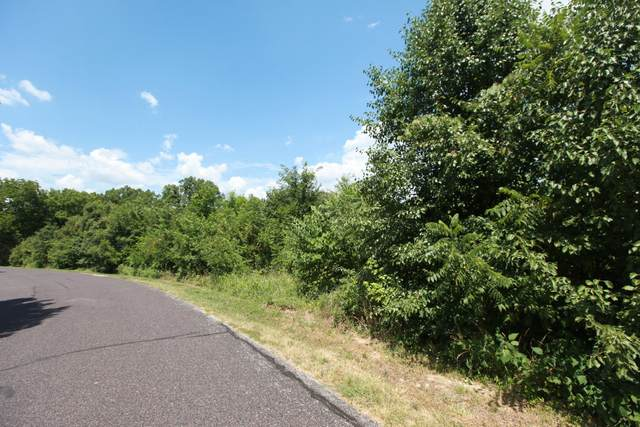 LOT 1 Bethel Dr, Columbia, MO 65203 (MLS #395321) :: Columbia Real Estate