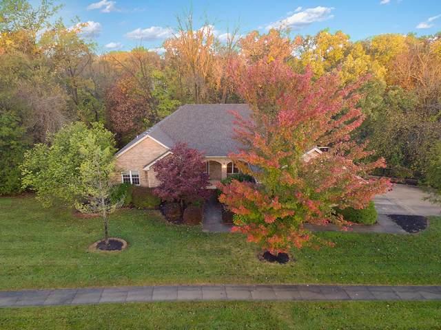6957 Seminole Ct, Columbia, MO 65203 (MLS #396585) :: Columbia Real Estate