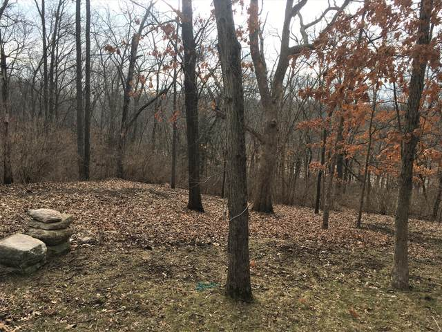 Westwinds Ct, Columbia, MO 65203 (MLS #397498) :: Columbia Real Estate