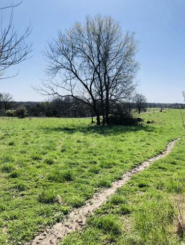 000 County Rd 429, Rocheport, MO 65279 (MLS #399100) :: Columbia Real Estate