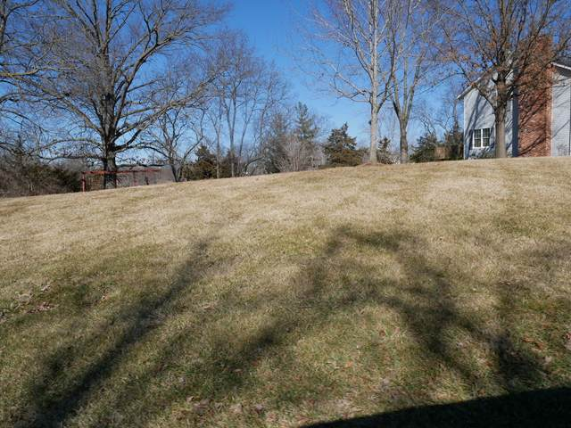 LOT 45 E Rocky Point Ct, Columbia, MO 65202 (MLS #397729) :: Columbia Real Estate