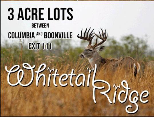 LOT 7 Whitetail Ridge, Wooldridge, MO 65287 (MLS #398960) :: Columbia Real Estate