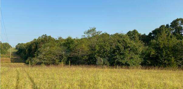TRACT 4 Goodson Dr, Columbia, MO 65202 (MLS #402680) :: Columbia Real Estate