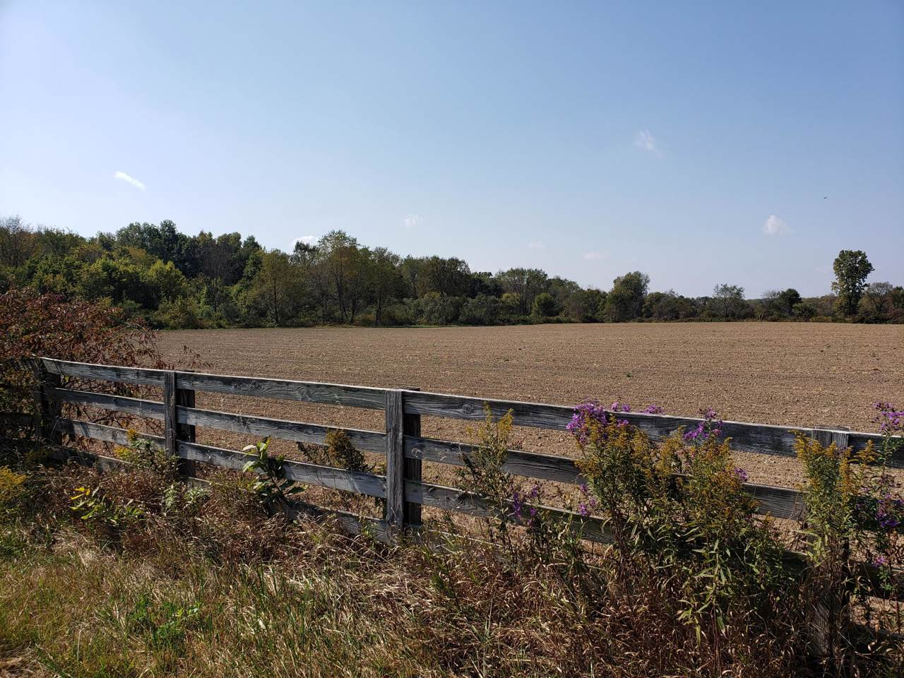 8295 Horn Road - Photo 1
