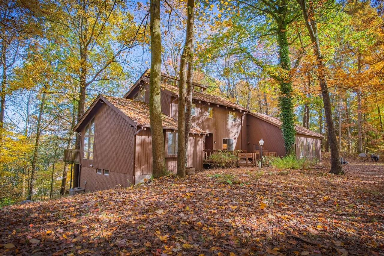 30901 Chestnut Ridge Road - Photo 1