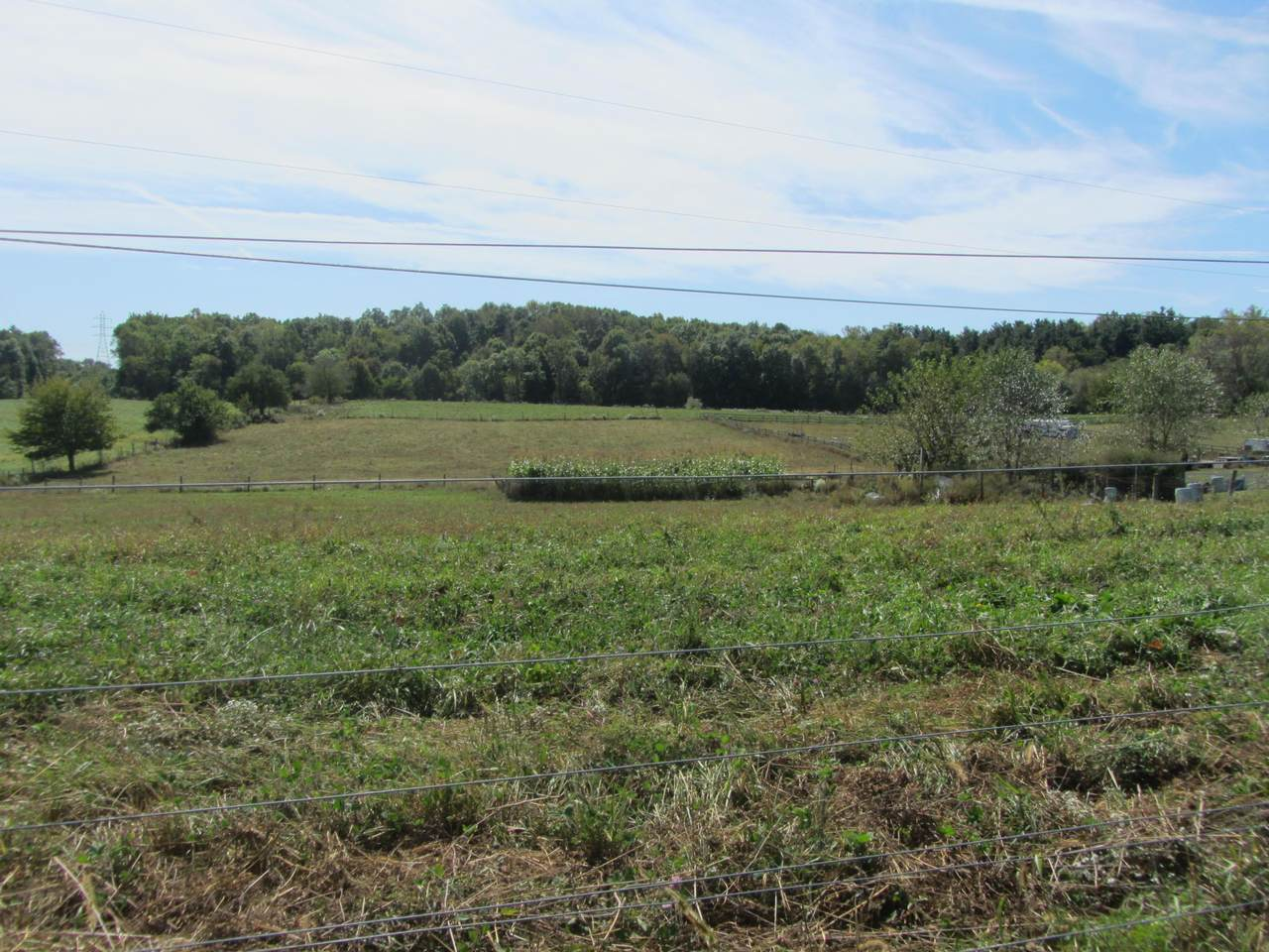 12500 New Delaware Road - Photo 1