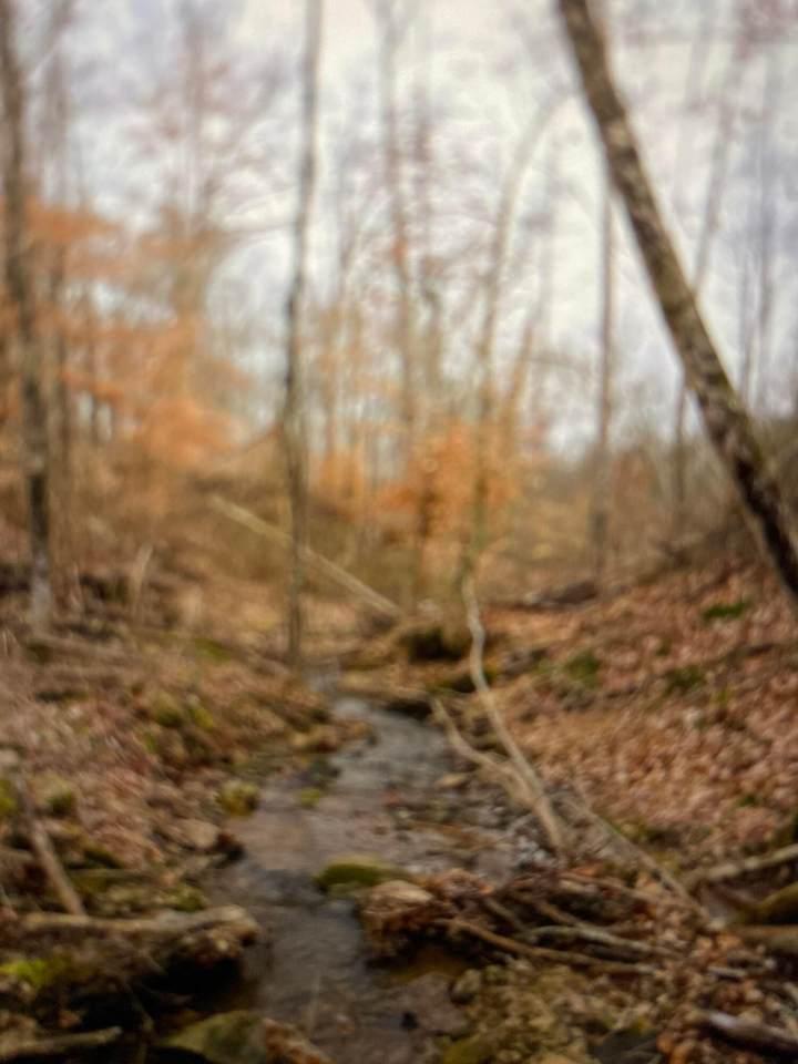 0 County Rd 25 - Photo 1