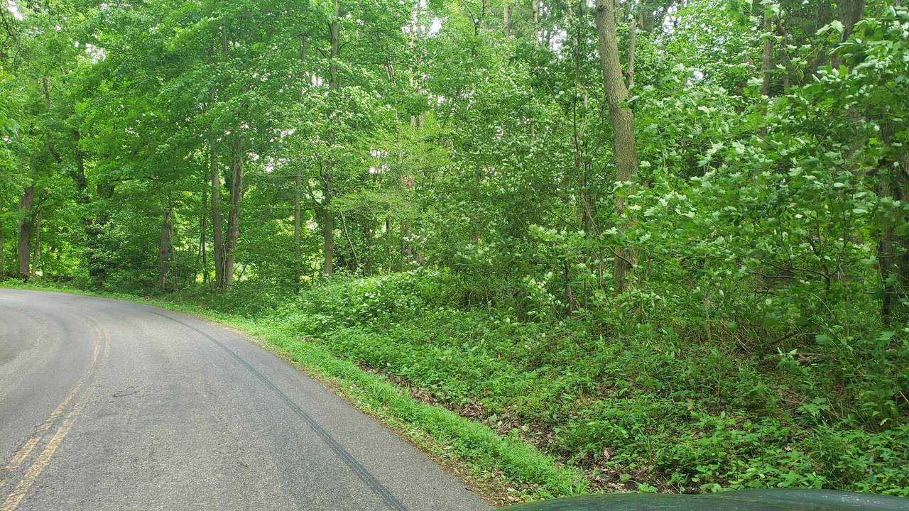 0 Mishey Road - Photo 1