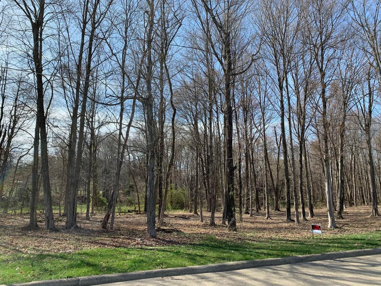 0 Oak Leaf Lane - Photo 1
