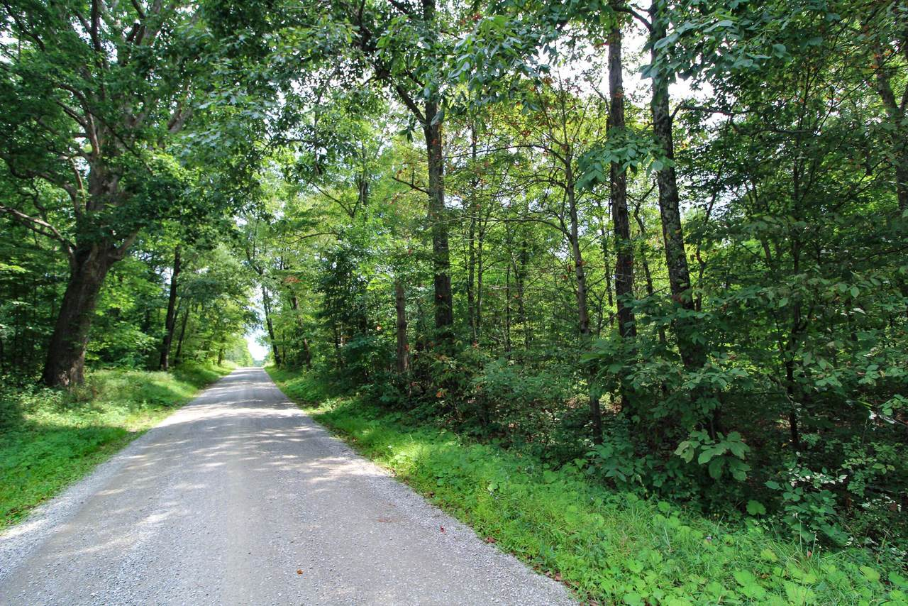 0 Wilsonwood Road - Photo 1