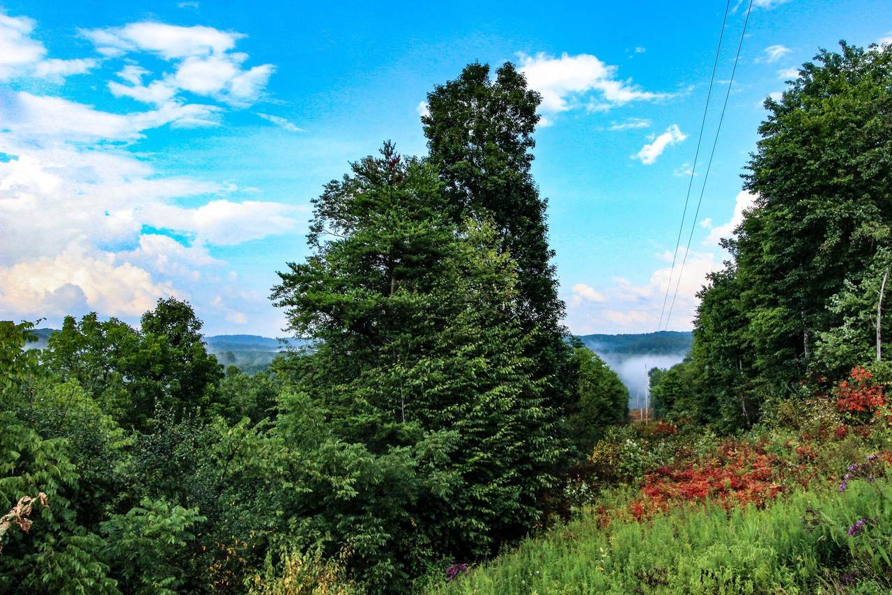 0 Dent Ridge Road - Photo 1