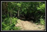 2177 Little Storms Creek Road - Photo 13