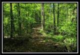 2177 Little Storms Creek Road - Photo 15