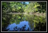 2177 Little Storms Creek Road - Photo 2