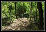 2177 Little Storms Creek Road - Photo 3