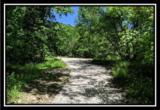 2177 Little Storms Creek Road - Photo 5