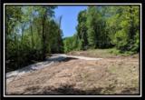 2177 Little Storms Creek Road - Photo 7