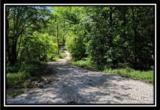 2177 Little Storms Creek Road - Photo 8