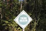 24182 Pumpkin Ridge Road - Photo 58
