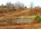 2455 Township Road 128 - Photo 19