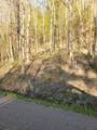 0 Spring Hill Road - Photo 2