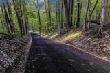 2204 Hazelton Etna Road - Photo 16