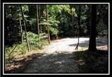 3160 Alice Road - Photo 12