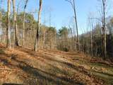 26822 Wildcat Hollow Road - Photo 28