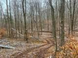 0 Meadow Run Road - Photo 29