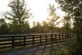 7327 Willowbrush Drive - Photo 28