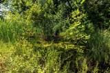 9065 Polaris Lakes Drive - Photo 10
