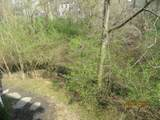 355 Nature Trail - Photo 7