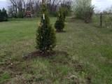 2562 Twin Pines Loop - Photo 5