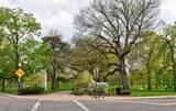 862 Grant Avenue - Photo 24